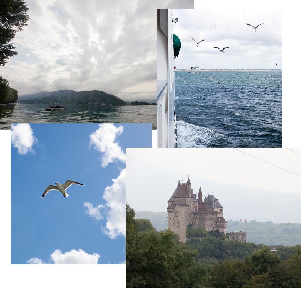 Gebruikte foto's voor de montage
